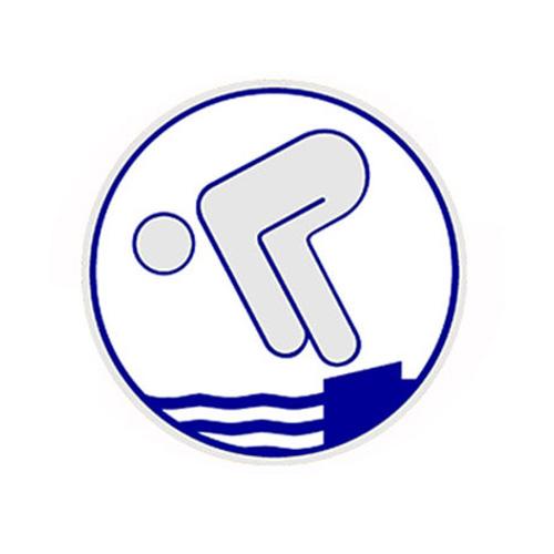 Silbernes Schwimmabzeichen   SVW05